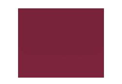 ssm-logo-2